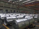 镀锌带钢产品展示